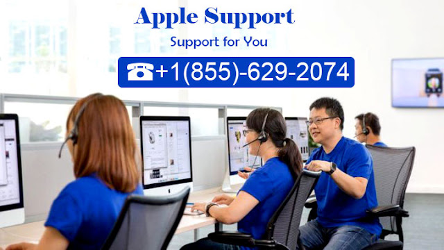 apple support phone number