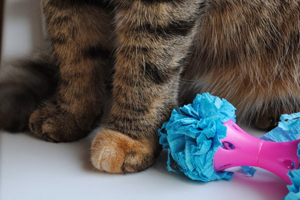 игрушка шуршалка для кошки