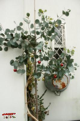 庭クリスマス飾り