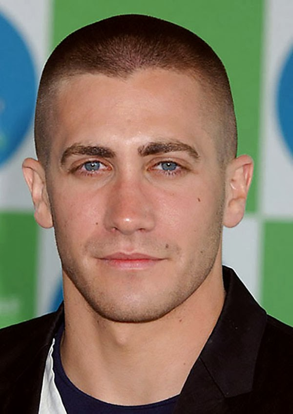 Men Short Hairstyles 2014 Idea - Hairstyles Tips