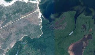 rio-yarigua-manati