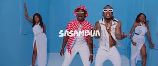 VIDEO The Mafik – Sasambua Mp4 Download