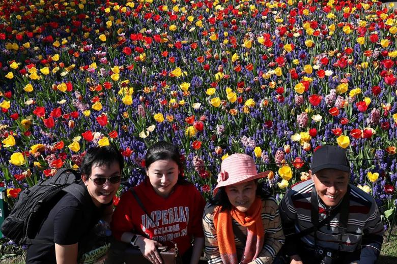 Tourists posing in front of tulips at the Keukenhof garden in Lisse.