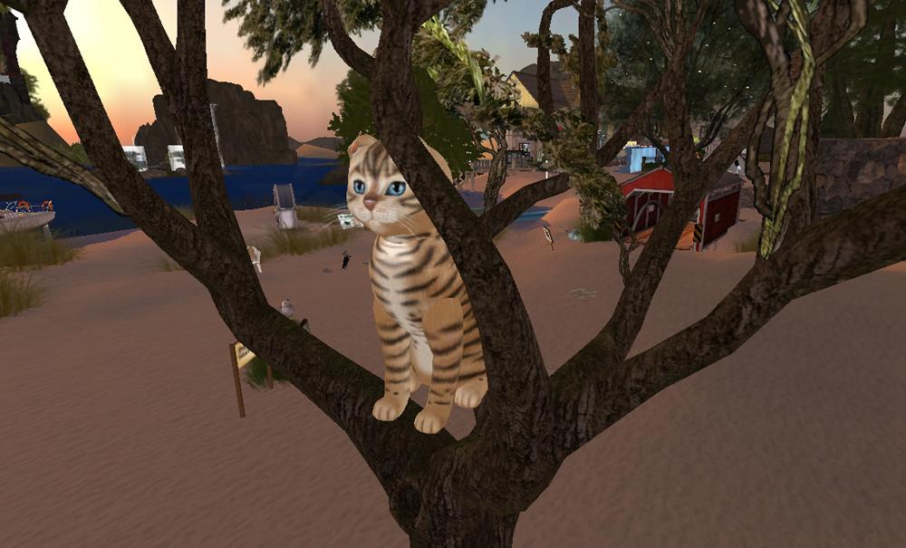 [Image: tree-genghis.jpg]
