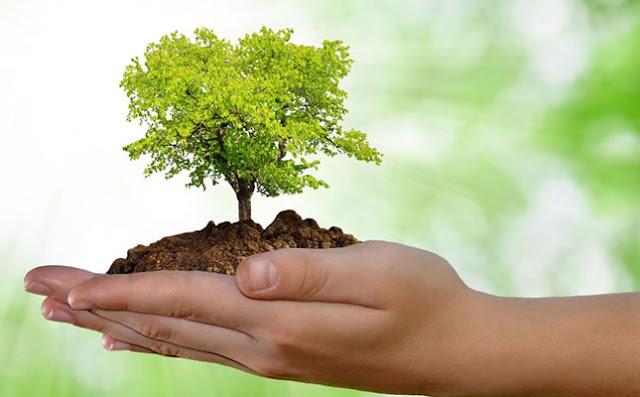 Lista de Atividades sobre Meio Ambiente