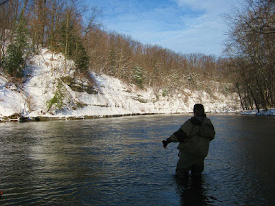 Steelhead Alley