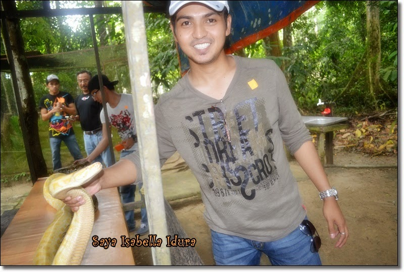 memegang ular, jumpa ular