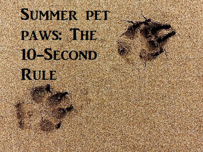 Summer pet paws: The 10-Second Rule