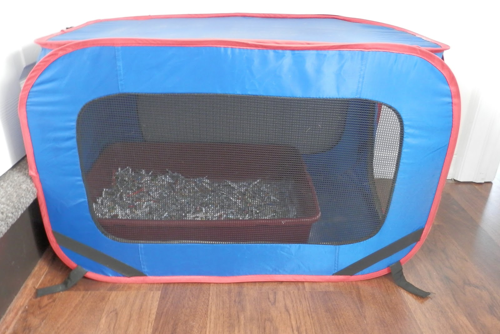 DIY Cat Litter Boxes & How To Train Cats To Use The Litter Box - Cat Lover | Cat Training