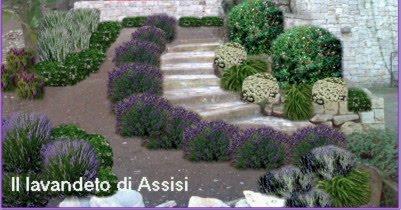 Progetti giardini privati gratis on line con piante aromatiche salvie ornamentali lavande - Giardini con pietre bianche ...