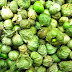 Preserving the Harvest and Canning Tomatillo Salsa