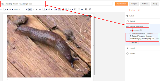 Mengembalikan iklan adsense yang tidak tayang dikarenakan judul blog