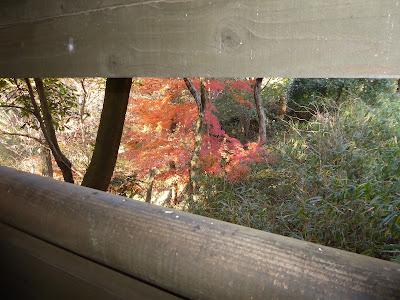 交野いきものふれあいの里 野鳥の観察小屋