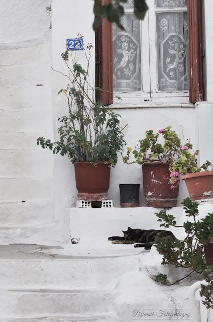 Anafiotika - niesamowity zakątek Aten