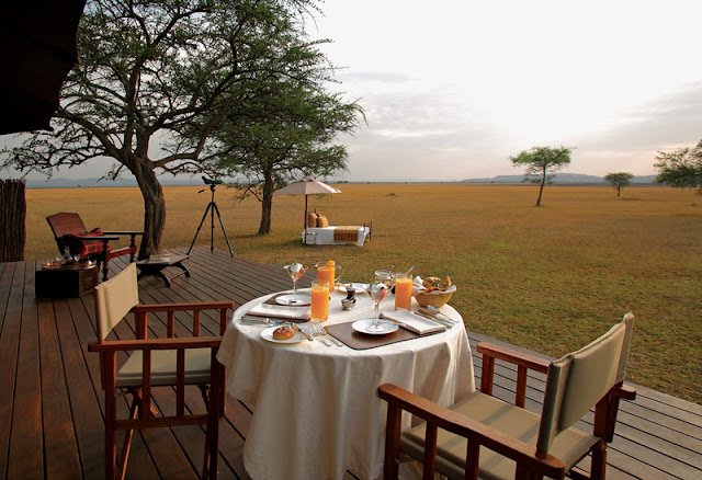 The Ultimate Luxury Safari│Tanzania 25