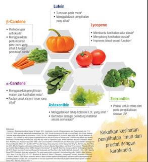 Carotomax Vitamin A Shaklee | Kebaikan, Perbezaan, Testimoni