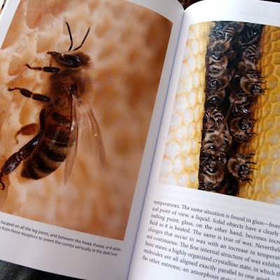 Eight Acres: The buzz about bees - book review - you need this book to take your beekeeping to the next level!