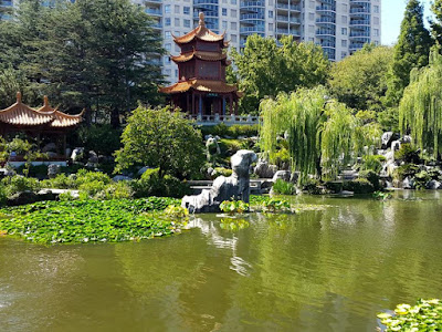 Beautiful Lake at Chinese Garden of Friendship Darling Harbour