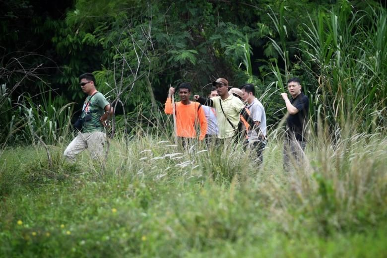 The hunt is on for Ganesha the runaway Lim Chu Kang farm bull