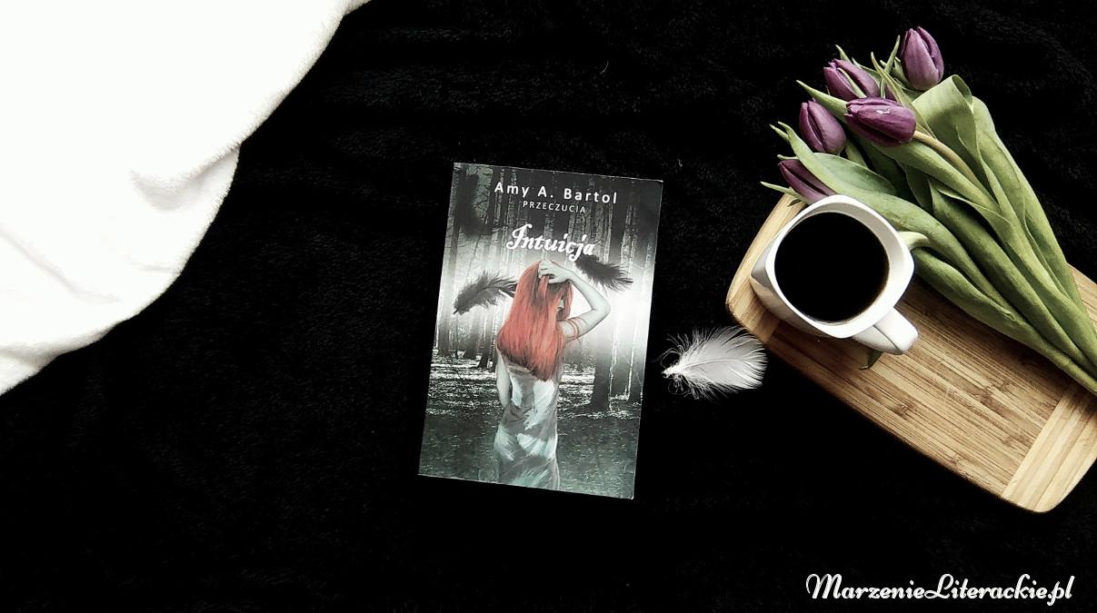marzenie literackie, intuicja, amy a bartol