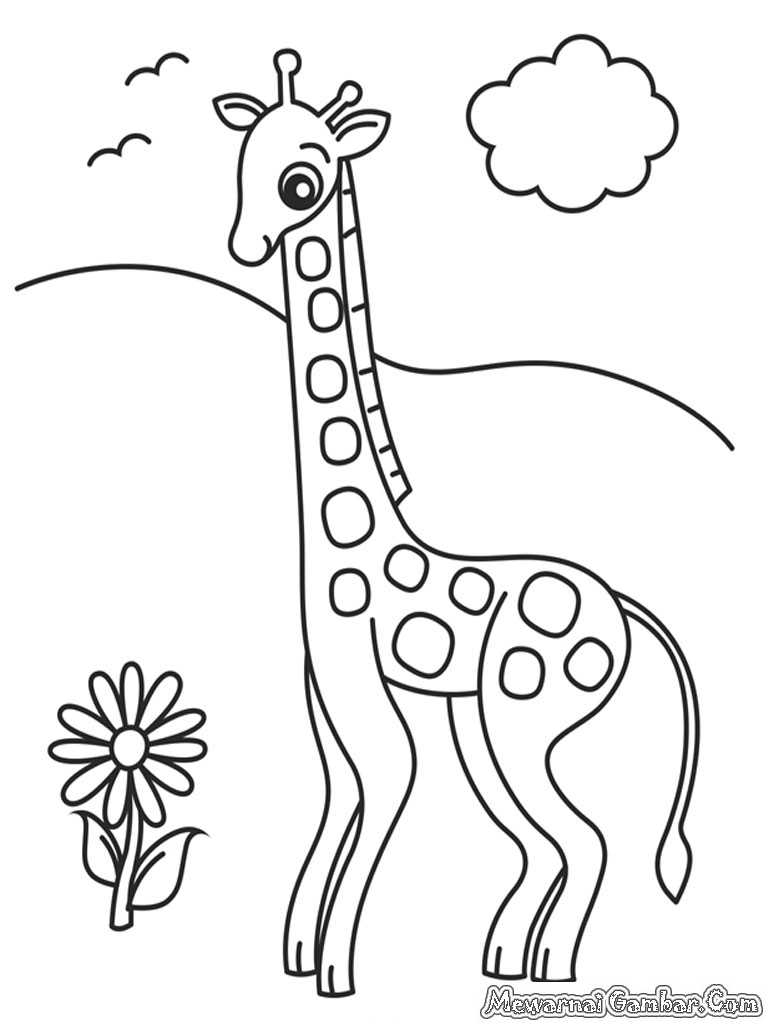 Kebun binatang coloring pages