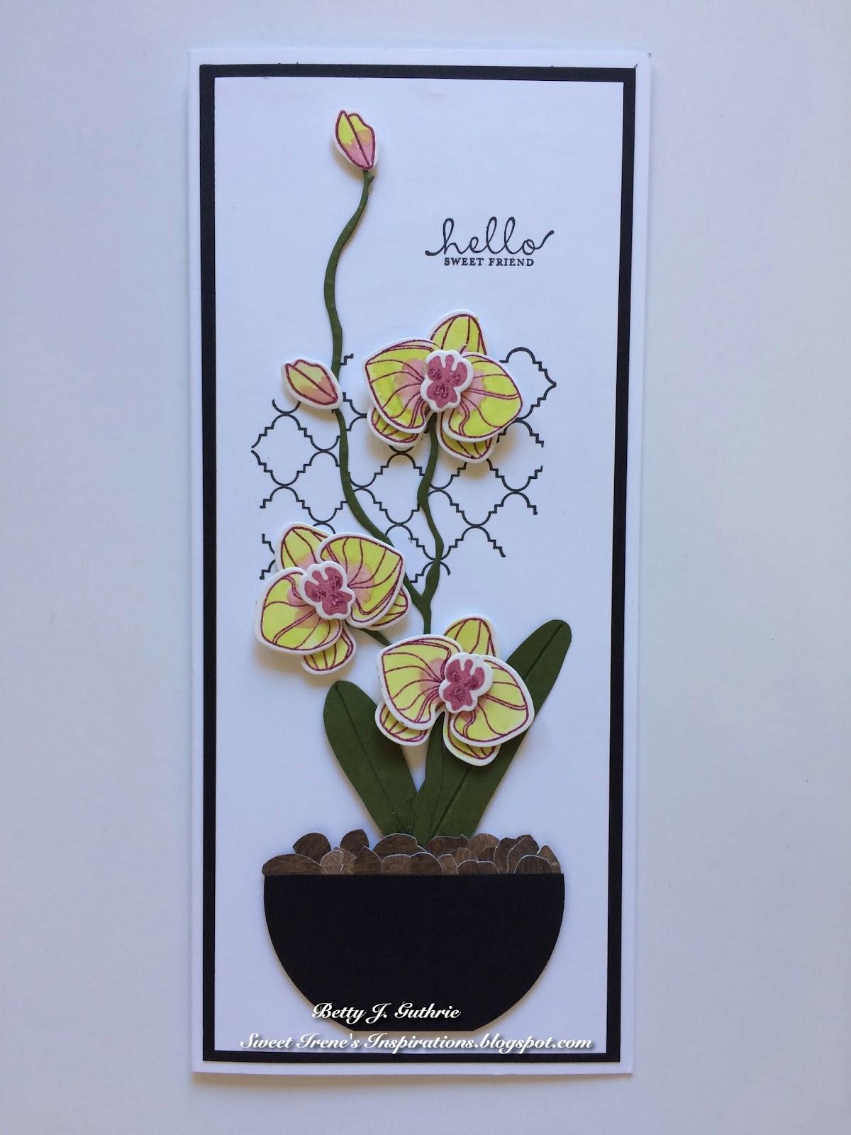 Открытка с орхидеями скрапбукинг, зубного врача смешные