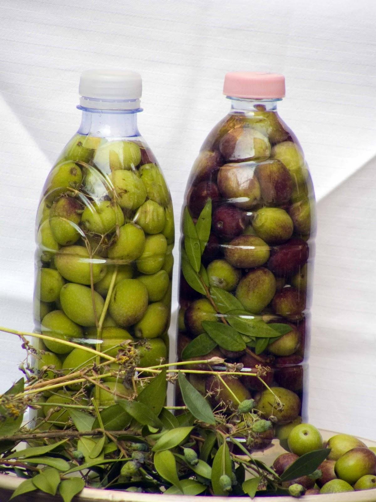 Come conservare le olive verdi in salamoia
