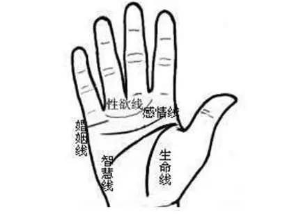如果你的手掌有「M字型」掌紋的話。那你一定要注意 !很重要