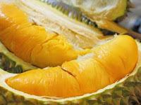 Gara-gara Bau Durian, Ratusan Orang Dievakuasi dari Universitas di Australia