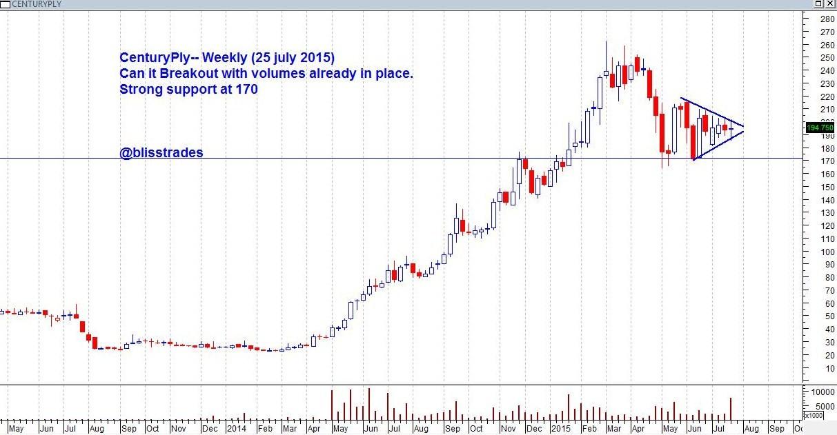 century ply share price
