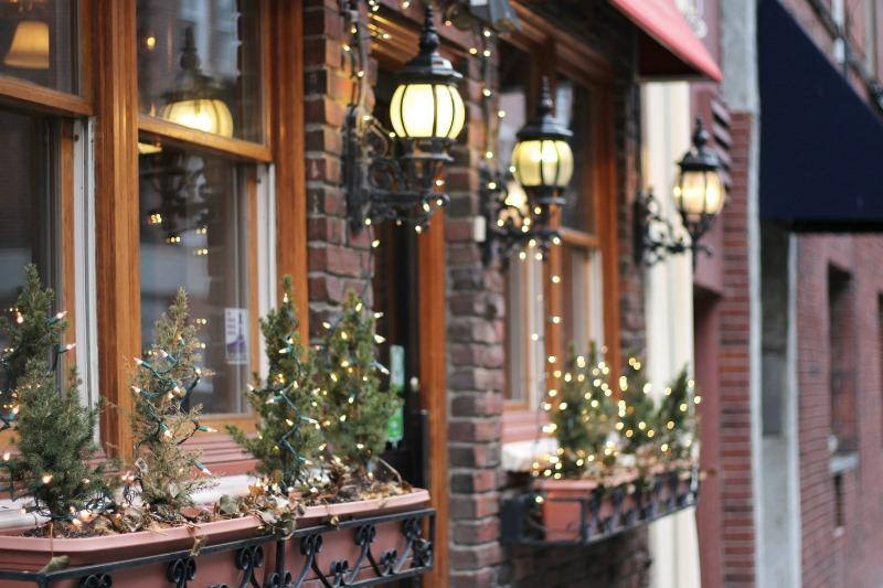 Decorar el jard n con luces de navidad guia de jardin - Luces navidenas solares ...