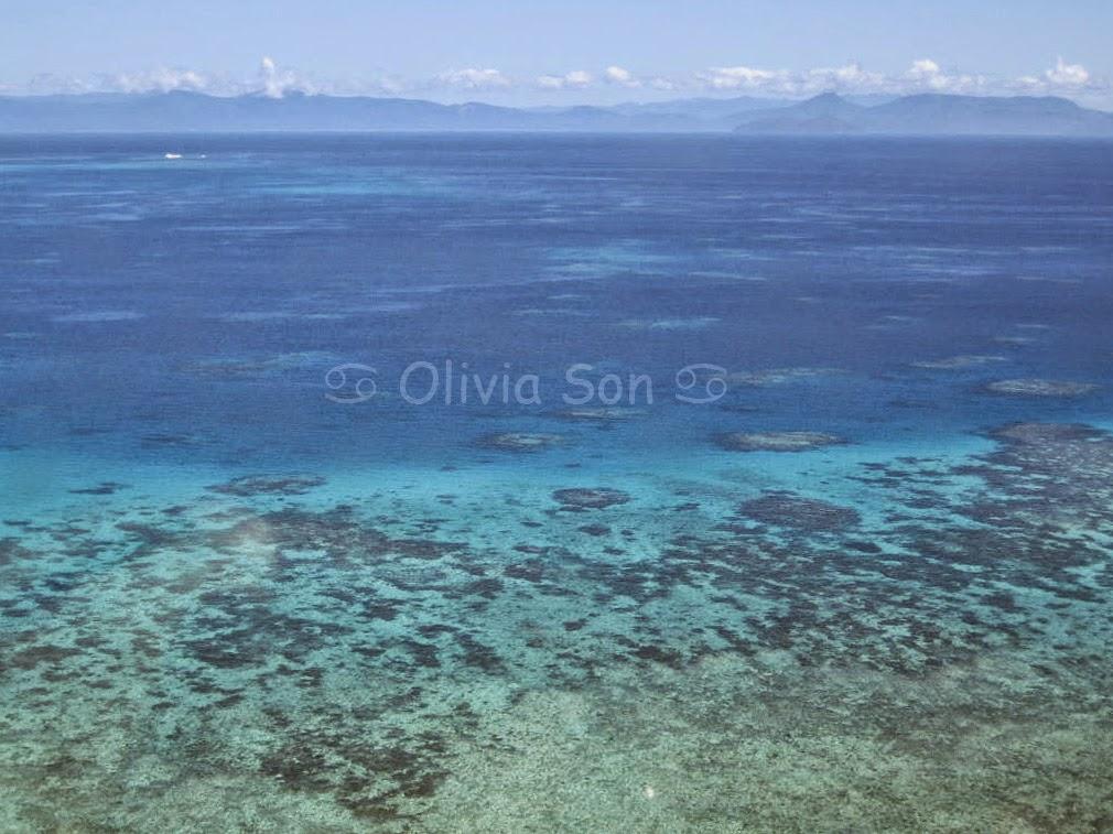 Barrière de Corail, Cairns, Queensland, Australie