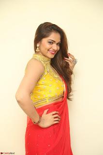 Actress Ashwini in Golden choli Red saree Spicy Pics ~  104.JPG