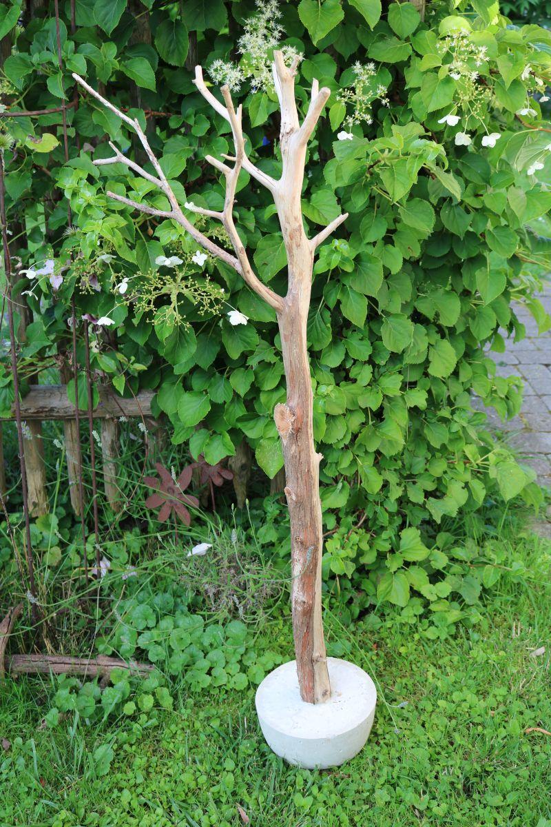 Meine grüne Wiese: Ast im Beton und anderes aus Beton