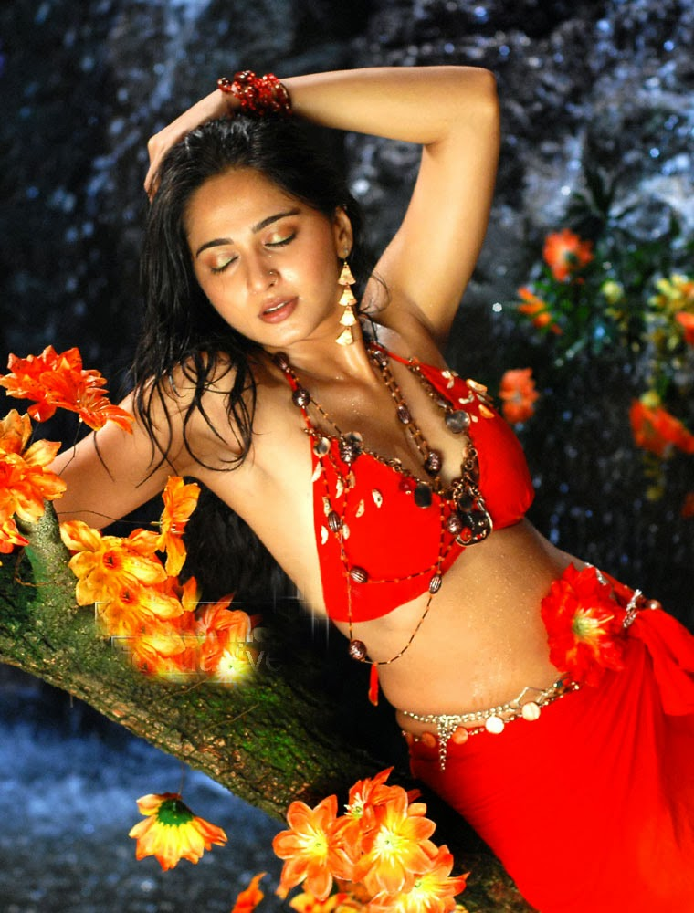 Tollywood Actress Anushka Shetty Hot Navel Show Stills In Red Bikini