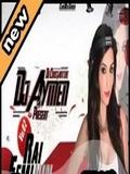 Dj Aymen25-Rai Féminin Mix Vol.2 2016