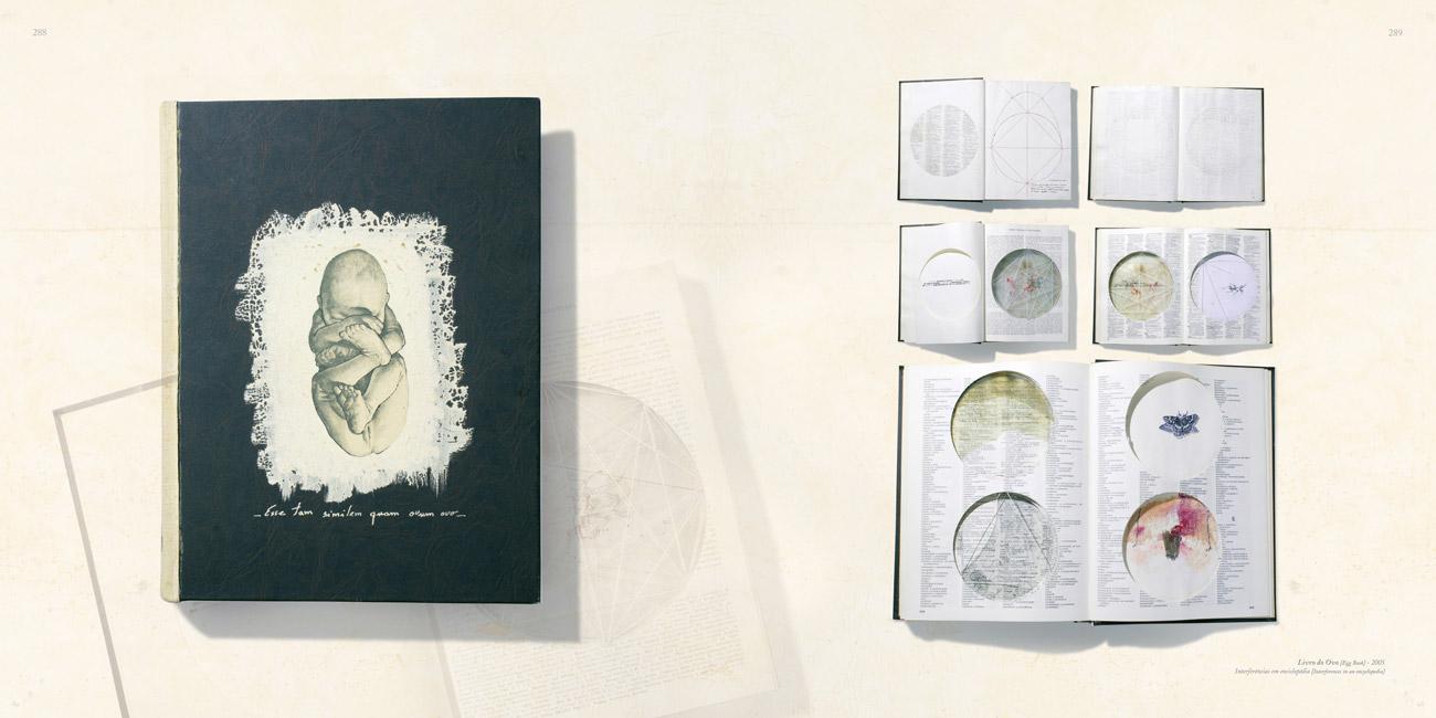 MIGUEL GONTIJO : ARTISTA BRILHANTE QUE FALA COM IMAGENS E SÍMBOLOS
