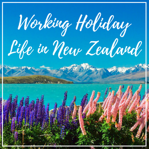 Follow my journey as I travel around and live in New Zealand for a year!