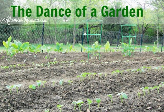 organic-garden-vegetable-tips