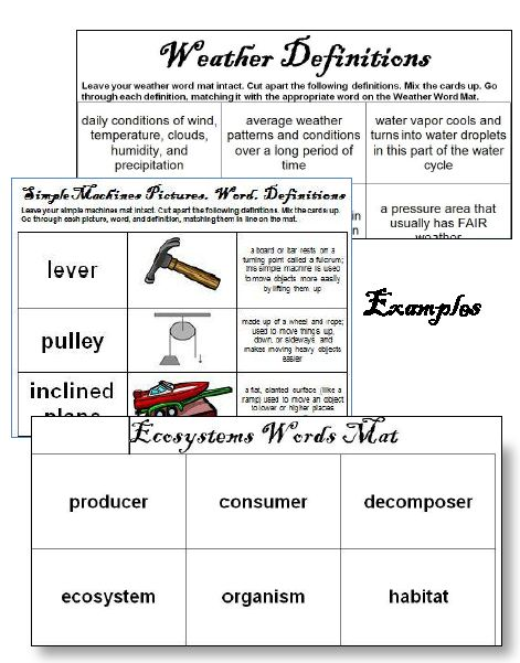 Ecosystems Worksheets Teaching Resources | Teachers Pay Teachers