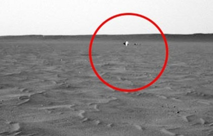 Which creature is this on Mars!