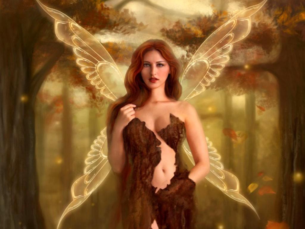 fairy pictures erotic