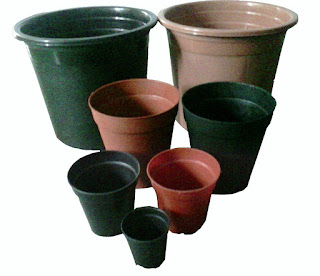 plastic pots for garden plants creeper