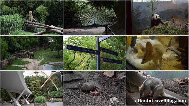 https://4.bp.blogspot.com/-pKDtfEq9a7U/WBlHAg_vrgI/AAAAAAAAIIk/dxMIOBmMJzkXcvYIHQ4hYgrDnmG461iuACLcB/s640/washington-zoological-park-001.jpg