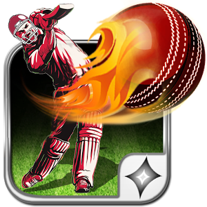 T20 Cricket: World Cup 2016