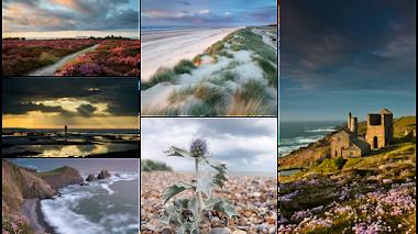 Changing Coastlines. Fotografía de flora costera. IGPOTY N.8