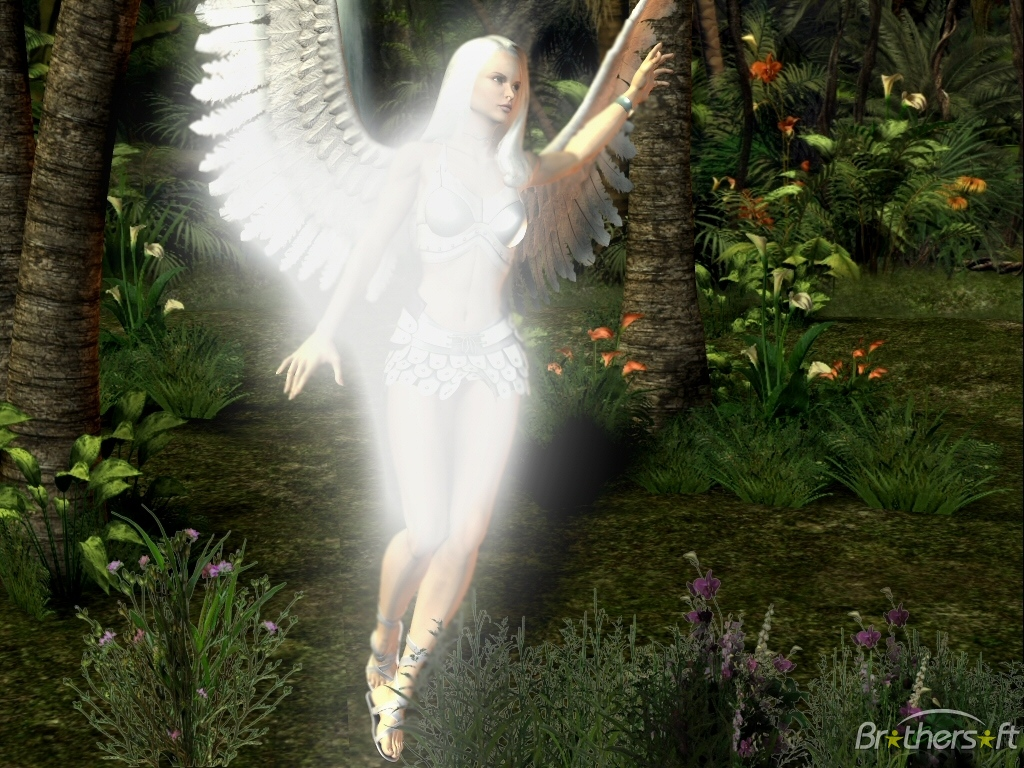 3d Angel Wallpapers Free Wallpaper Wallpaper Angels Free