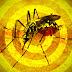 Prefeitura de cidade do Recôncavo emite alerta sobre febre amarela