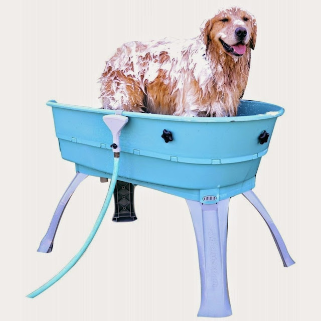 Creative Dog Products and Gadgets (15) 1