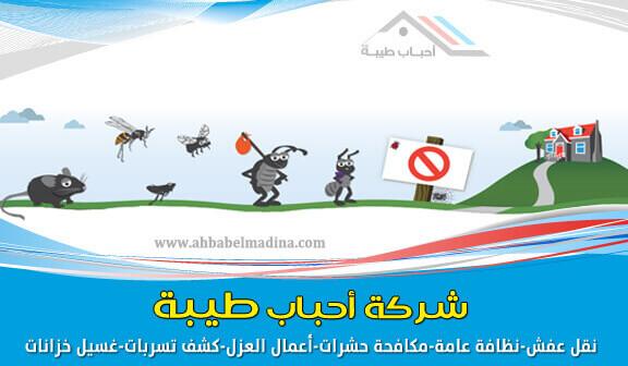 شركة مكافحة حشرات بالمدينة المنورة  0557763091